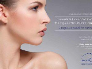Curso de la Asociación Española de Cirugía Estética Plástica (AECEP), Mayo 2014